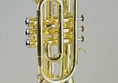 temby-cornet-2