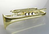 temby-cornet-4
