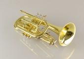 temby-cornet-7