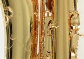Temby Professional Tenor Saxophone