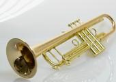 temby-trumpet-pro-rosebrass-4