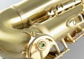 temby-alto-custom-matt-gold-06