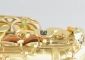 temby-alto-custom-matt-gold-07