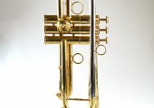temby-trumpet-limited-2014-2a