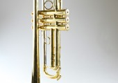 temby-trumpet-limited-2014-2d