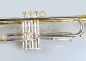 temby-trumpet-limited-2014-3z