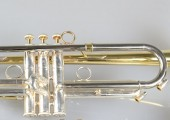 temby-trumpet-limited-2014-5