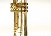 temby-trumpet-limited-2014-7c