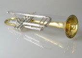 Temby Customised Bb Trumpet 2015-2